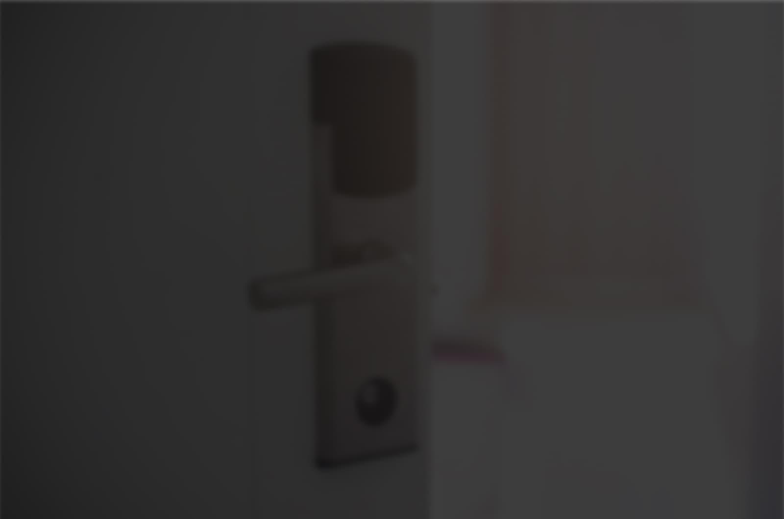 the door with a smart lock