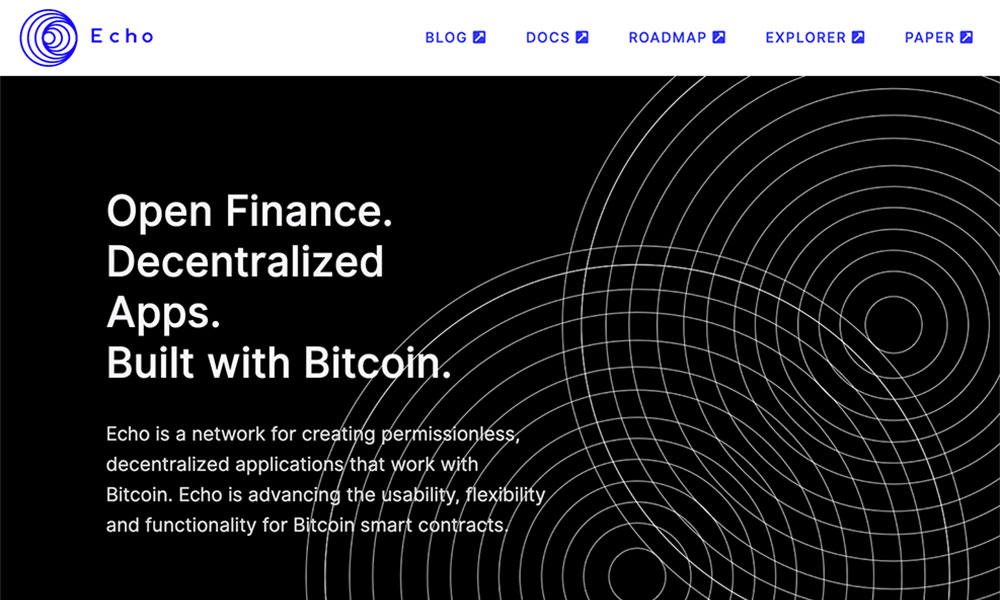 The screenshot of Echo platform's website page