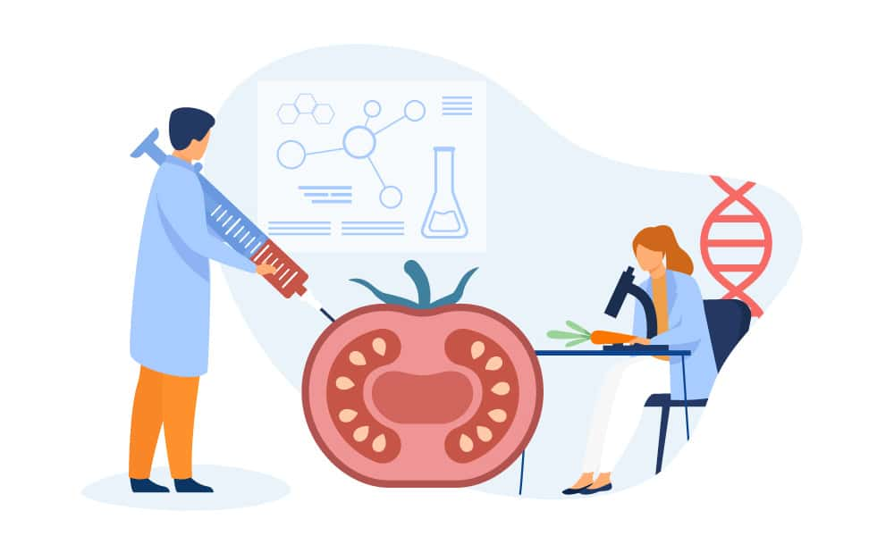 Scientists examining a tomato and carrot in the lab