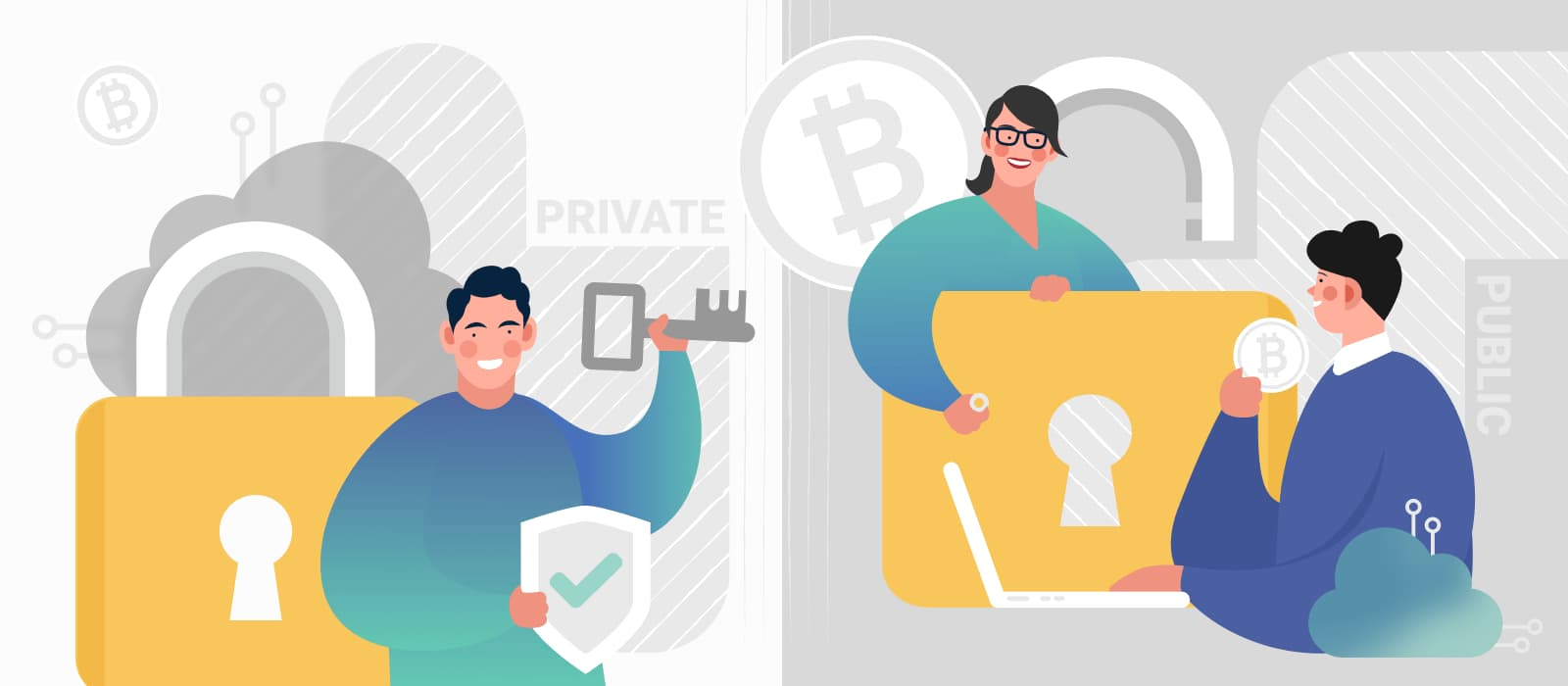 Public vs. Private Blockchain: How Different Are They?