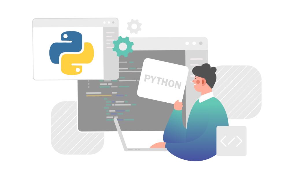A person studying Python programming language